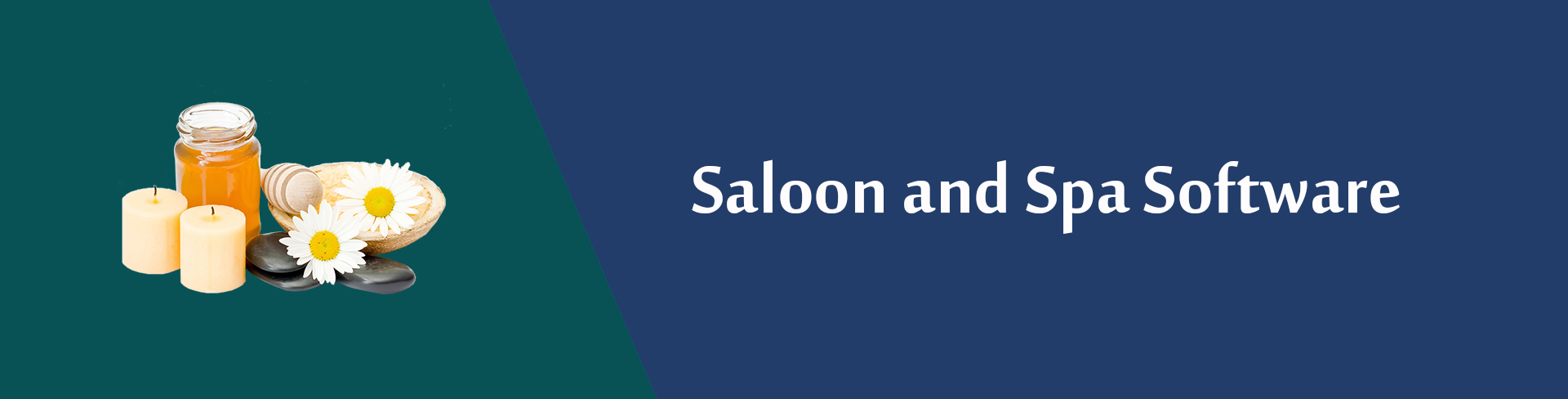 Saloon and Spa Software